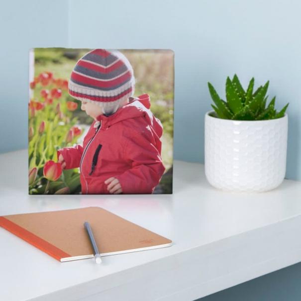 tablou imprimat pe canvas 20x20 pentru birou