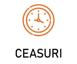 Ceasuri personalizate brasov
